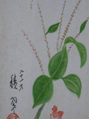 祖父が描いた水引草