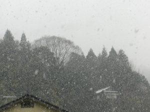 降りしきる雪!!